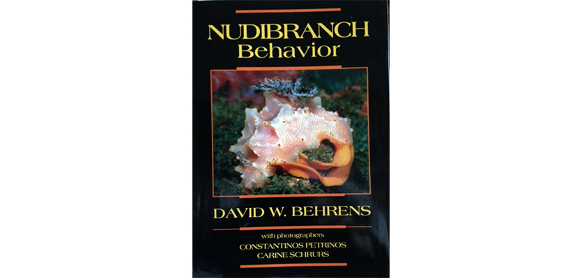 Nudibranch behaviour