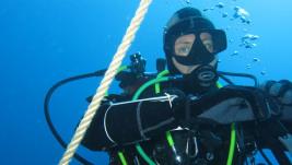 Diving in Ponza 2015